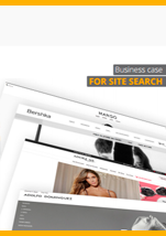 Business Case for Search